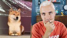 Une énième vidéo avec mon chien mais pour une bonne raison