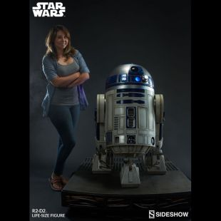 The arm actual size of the droid R2D2 in Star Wars IV : A