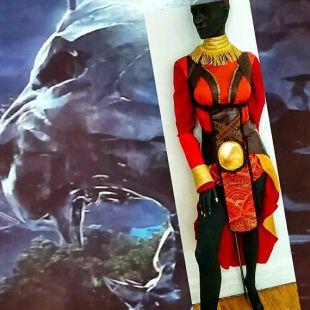 COSPLAYING OKOYE CHARACTER   10pc   Black Panther Character   Dora Milaje   Elite Bodyguard