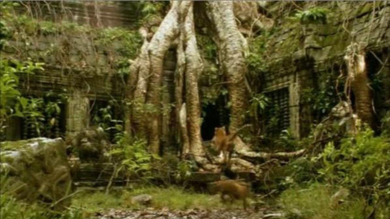 Le temple Beng Mealea au Cambodge dans le film Deux Frères