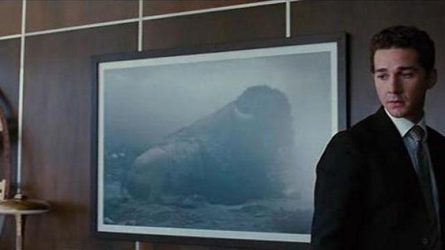 The photograph of buffalo Untitled #153 by Simen Johan in the office of Louis Zabel (Frank Langella) in Wall Street : money never sleeps
