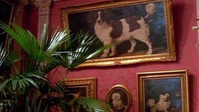 Le portrait d'un chien par George Stubbs dans Le temps de l'innocence