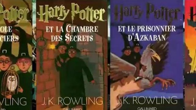 Book Harry Potter And The Chamber Of Secrets Seen In Point