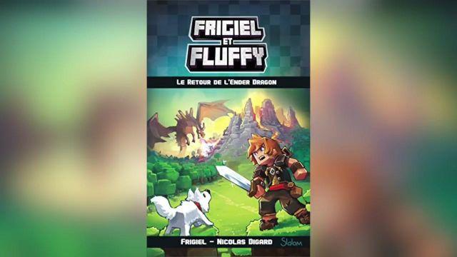 Le Tome 1 De Frigiel Et Fluffy Apercu Dans La Video Ce