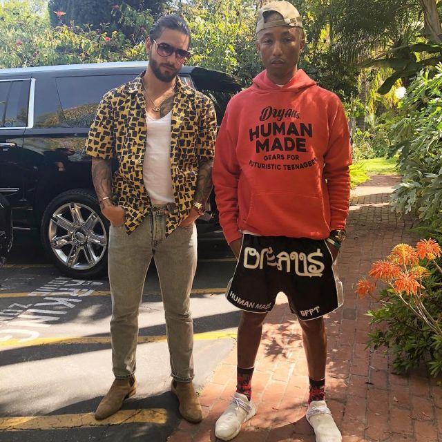 best authentic 0e53b 501c6 The pair of Adidas x Pharrell Williams Human Race NMD HU ...