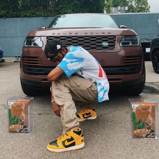 premium selection aba50 29431 Nike Dunk High Le