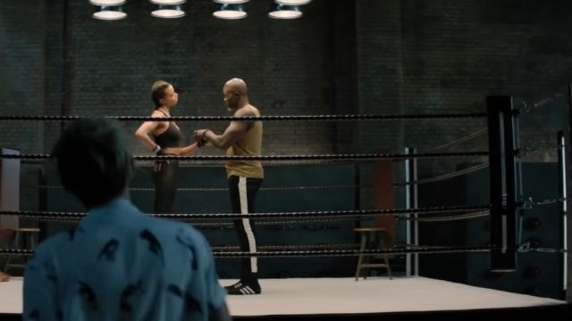 Shoes Box Hog 2 adidas Bosley (Djimon Hounsou) in Charlie's Angels