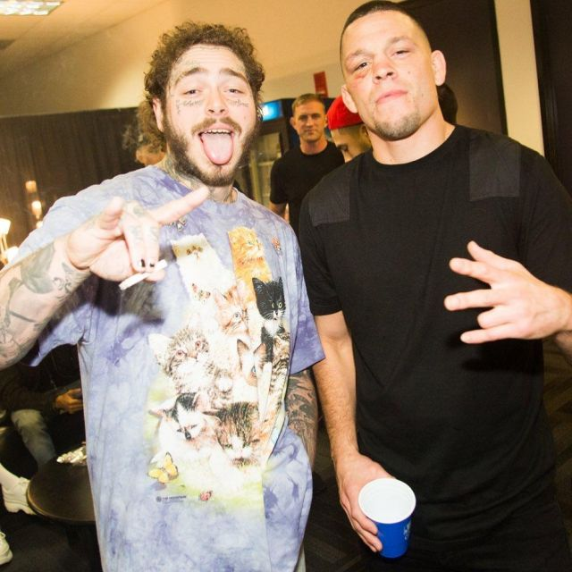 The Mountain Printed Cat Purple Kittens Tshirt of Post Malone on the Instagram account @postmalone