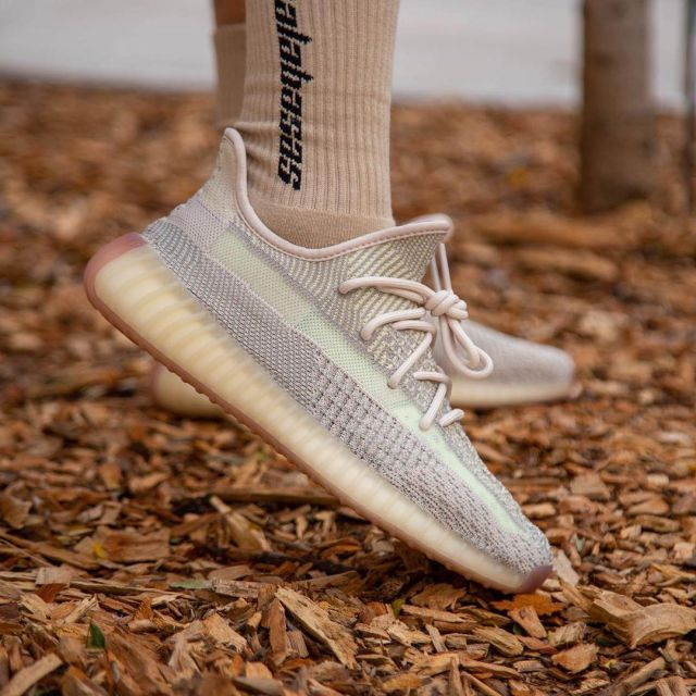 Adidas Yeezy Boost 350 V2 Citrin (non reflective) on the account ...