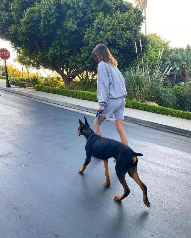 Brandy Melville Erica Malibu Sweat-shirt porté par Kendall Jenner Instagram 16 avril 2020
