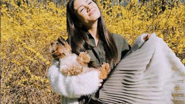 Robe plissée portée par Caila Quinn dans Le Bachelor Saison de 24