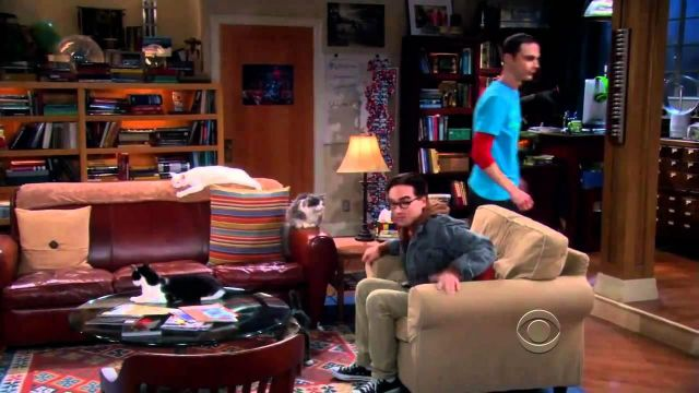 Pleasing The Leather Sofa In Sheldon Cooper Jim Parsons In The Big Andrewgaddart Wooden Chair Designs For Living Room Andrewgaddartcom