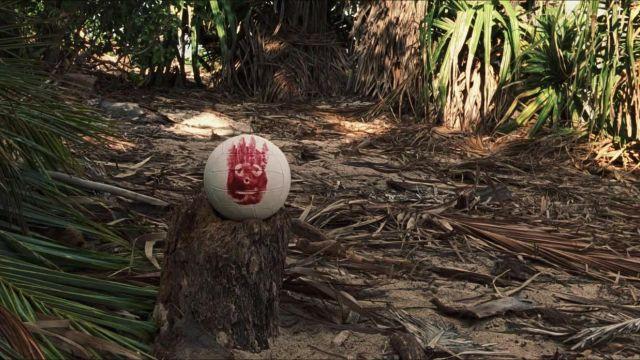 """Le ballon de volleyball """"Wilson"""" dans Seul au monde"""