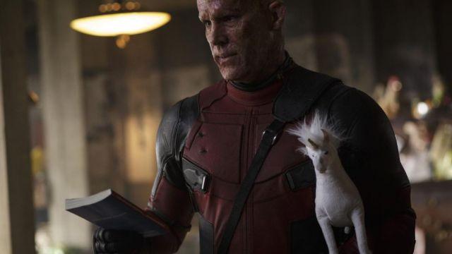 The stuffed unicorn of Deadpool
