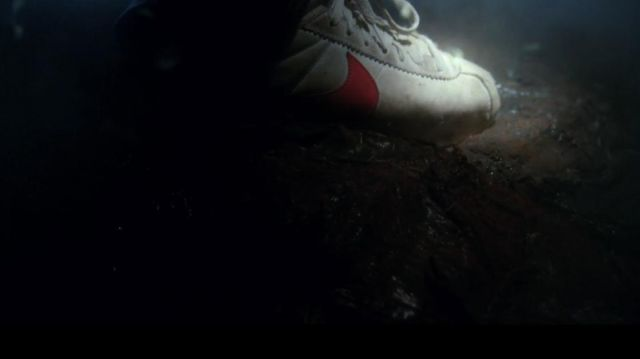 The sneaker Nike Cortez Classic Steve Harrington (Joe Keery