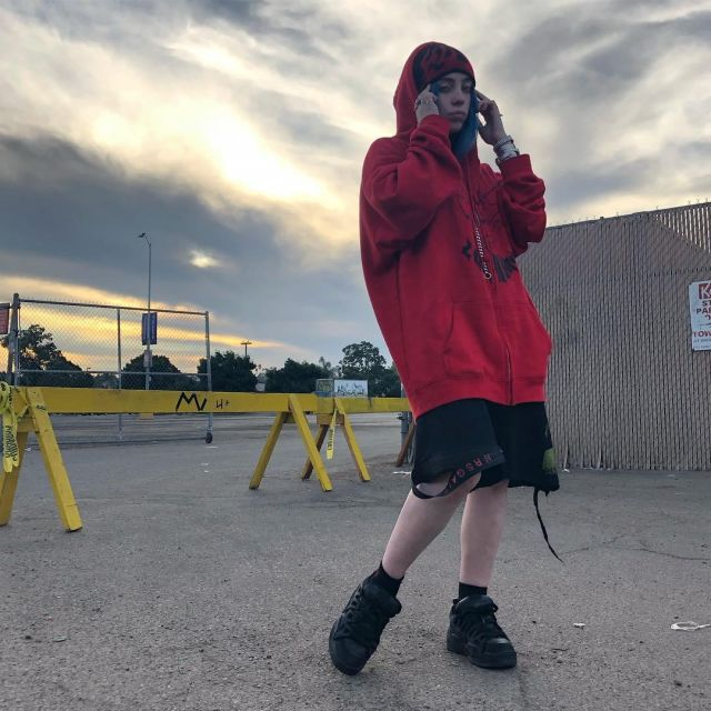 Shorts Worn By Billie Eilish As Seen On Her Instagram Account Wherearetheavocados Spotern
